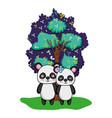 adorable panda couple animal and tree vector image