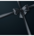 Black Bow And Ribbon vector image vector image