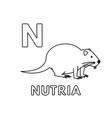 cute cartoon animals alphabet nutria vector image vector image