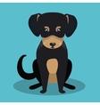 cute dog design vector image vector image