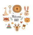 poster with bohemian baby animals faces vector image