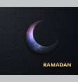 ramadan background night view starry vector image vector image