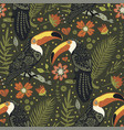 seamless pattern with toucan vector image