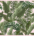 seamless pattern with tropical leaves on pink vector image