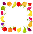 square banner with fruits vector image