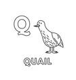 cute cartoon animals alphabet quail vector image