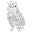 entangle owl painting for adult anti stress vector image vector image