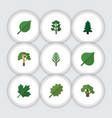 flat icon nature set of alder wood tree and vector image vector image