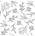 floral seamless pattern with hand drawn herbs vector image vector image