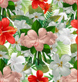 hibicus flowers pattern 4 vector image vector image