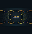 luxury abstract background vector image vector image