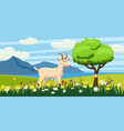 goat grazing in a meadow on a background landscape vector image
