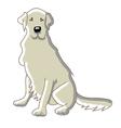 labrador dog vector image vector image