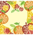 Ornamental Fruit frame vector image vector image