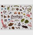 scientific laboratory in biology icon set vector image vector image
