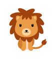 adorable little lion in flat style vector image
