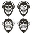 funny music monkey set hand drawn vector image vector image