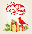red cardinal bird and gifts vector image vector image