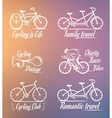 Set Vintage Cycling and Bicycle Sign and Badges vector image