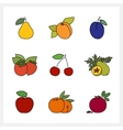 Fruit Growing on a Trees vector image vector image