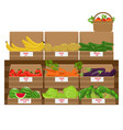 shelves with fresh vegetable assortment wooden vector image