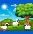 the sheeps farem are enjoying nature by the cage vector image