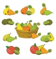 Wicker basket and fruits set vector image vector image