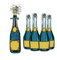 bottle of champagne celebration holiday greetings vector image vector image