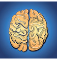 brain and creativity vector image vector image