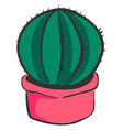 cactus in pink pot on white background vector image vector image