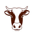 cow head farm vector image vector image