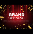 grand opening event design gold confetti vector image
