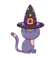 happy cat animal with witch hat
