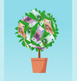 money tree with euro banknotes growing vector image vector image