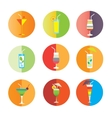 Alcohol drinks and coctails icon set vector image vector image