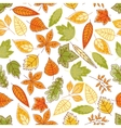 Autumn leaves seamless pattern for nature design vector image vector image