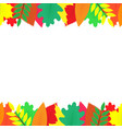 background decorated with colorful autumn leaves vector image