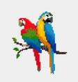 cartoon parrot - pixel vector image vector image