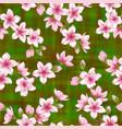 chinese cherry blossom sakura branches seamless vector image