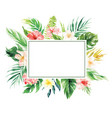 flower border with rectangle blank area wedding vector image vector image