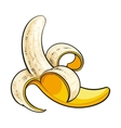 One open peeled ripe banana sketch style vector image vector image