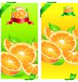 orange juice flyer design vector image