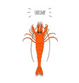 orange shrimp logo isolated on white background vector image
