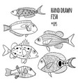 set of hand drawn stylized fishes vector image