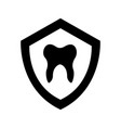 shield with human tooth isolated icon vector image vector image