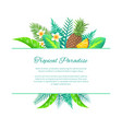 tropical paradise summer leaves and fruits vector image vector image