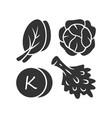 vitamin k glyph icon edible greens and cabbage vector image vector image