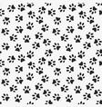 dog paw print seamless pattern vector image