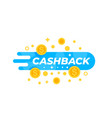 cashback offer money refund vector image