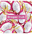 dragon fruit pattern realistic summer vector image vector image